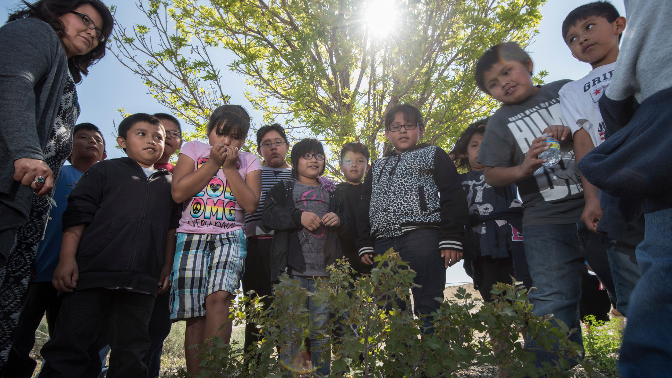 Studying Environmental Education helps build critical thinking skills