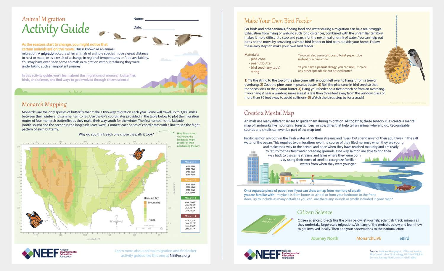 Animal Migration Activity Guide page layout