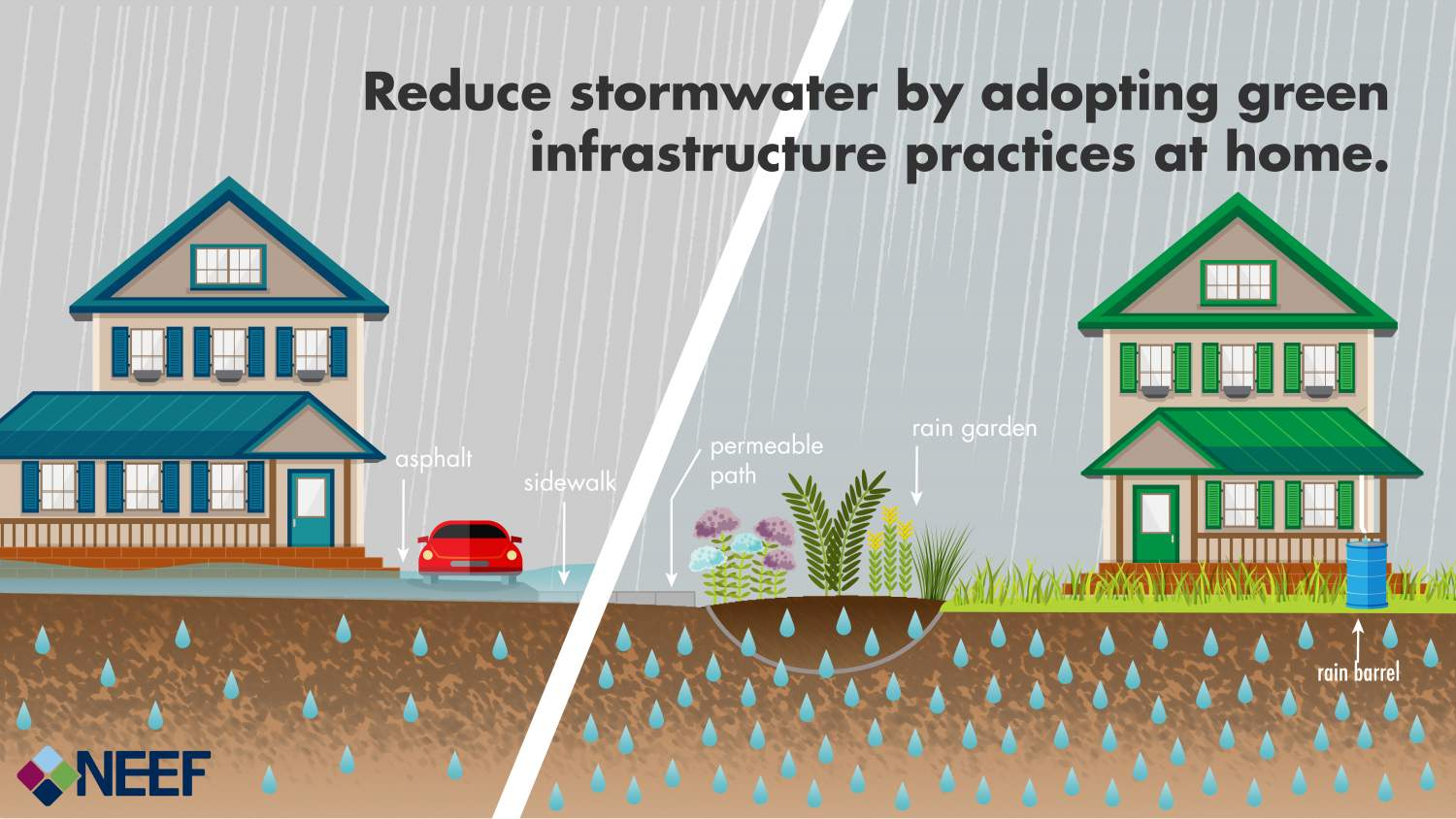 Reduce stormwater by adopting green infrastructure practices at home.