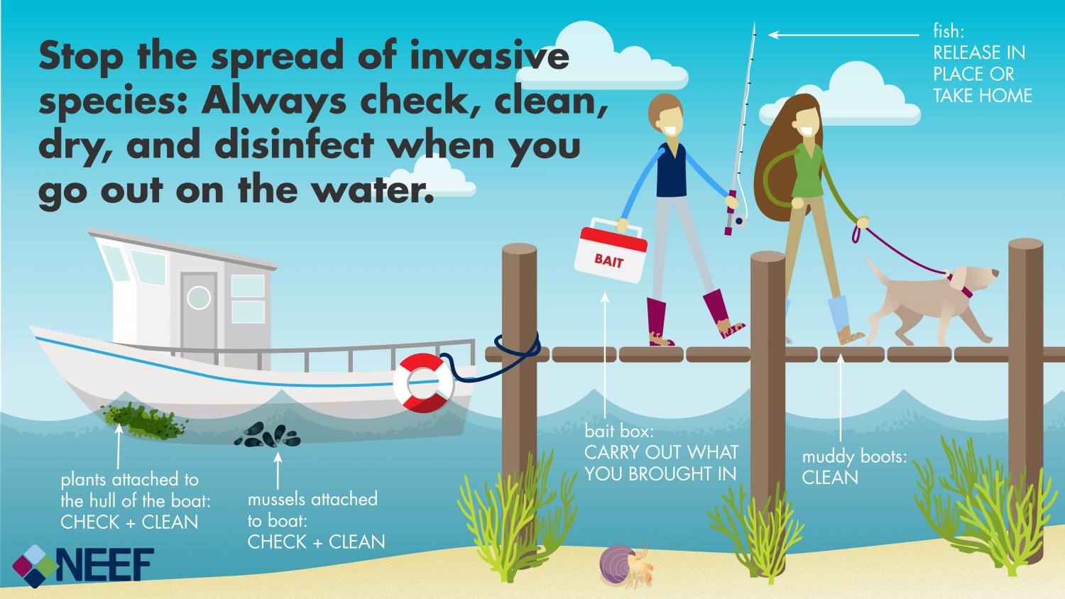 Infographic of two people and a dog exiting a boat, holding fishing gear. Text: Stop the spread of invasive species; Always check, clean, dry, and disinfect when you go out on the water.