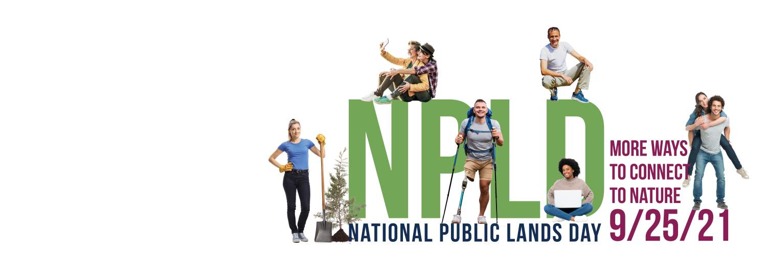 NPLD letters with people around them