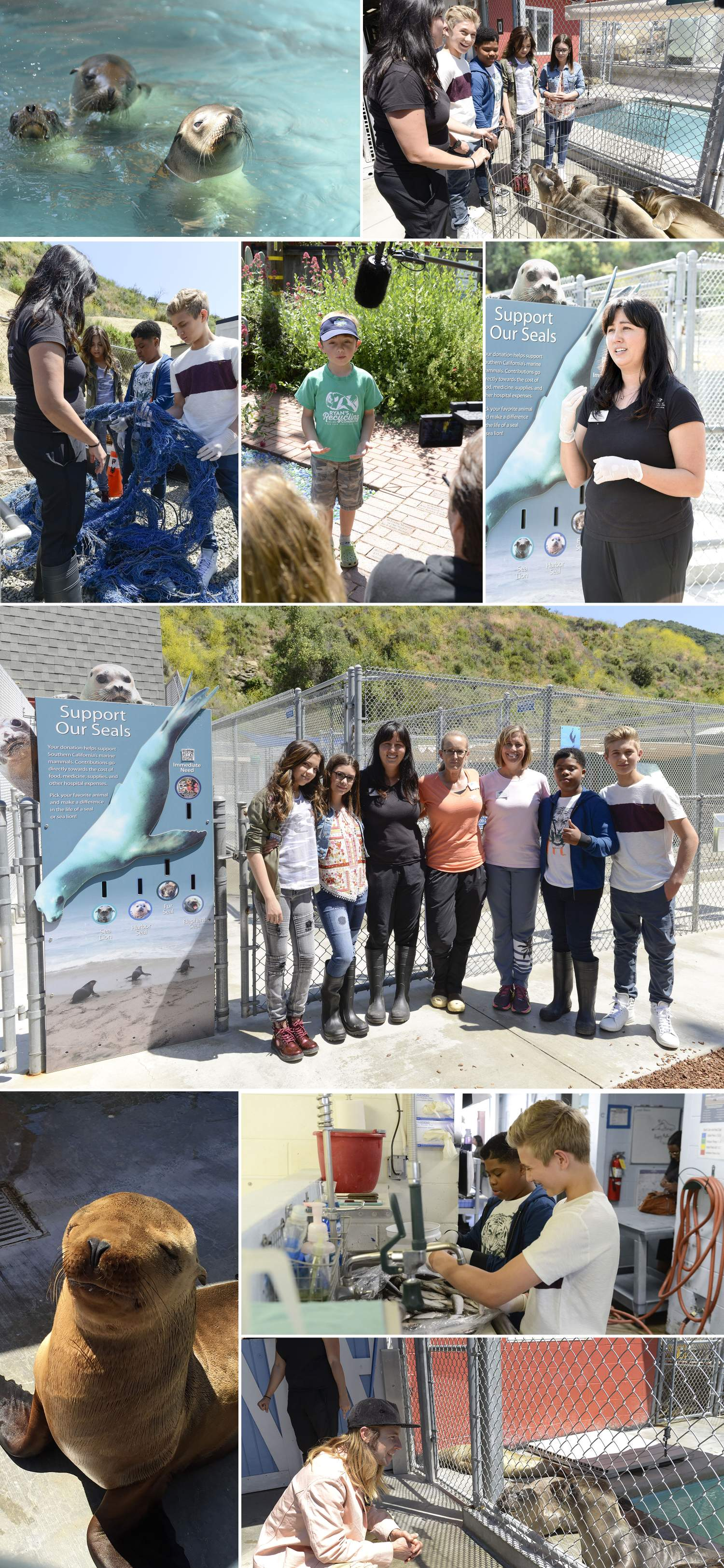 Nickelodeon partners with NEEF on Earth Day at the Pacific Marine Mammal Center.