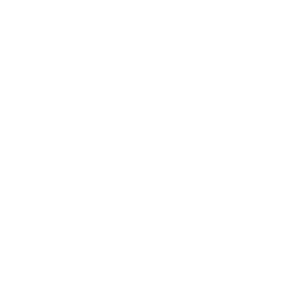 REI.png