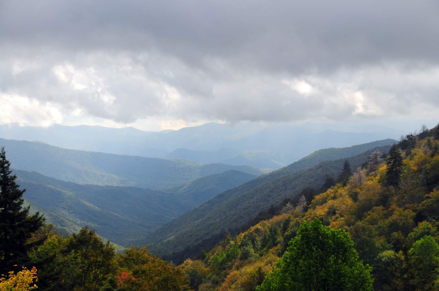 Fall color from Luftee Overlook on Newfound Gap Road