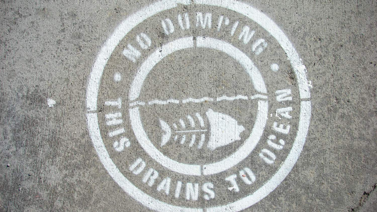 No dumping; this drains to ocean