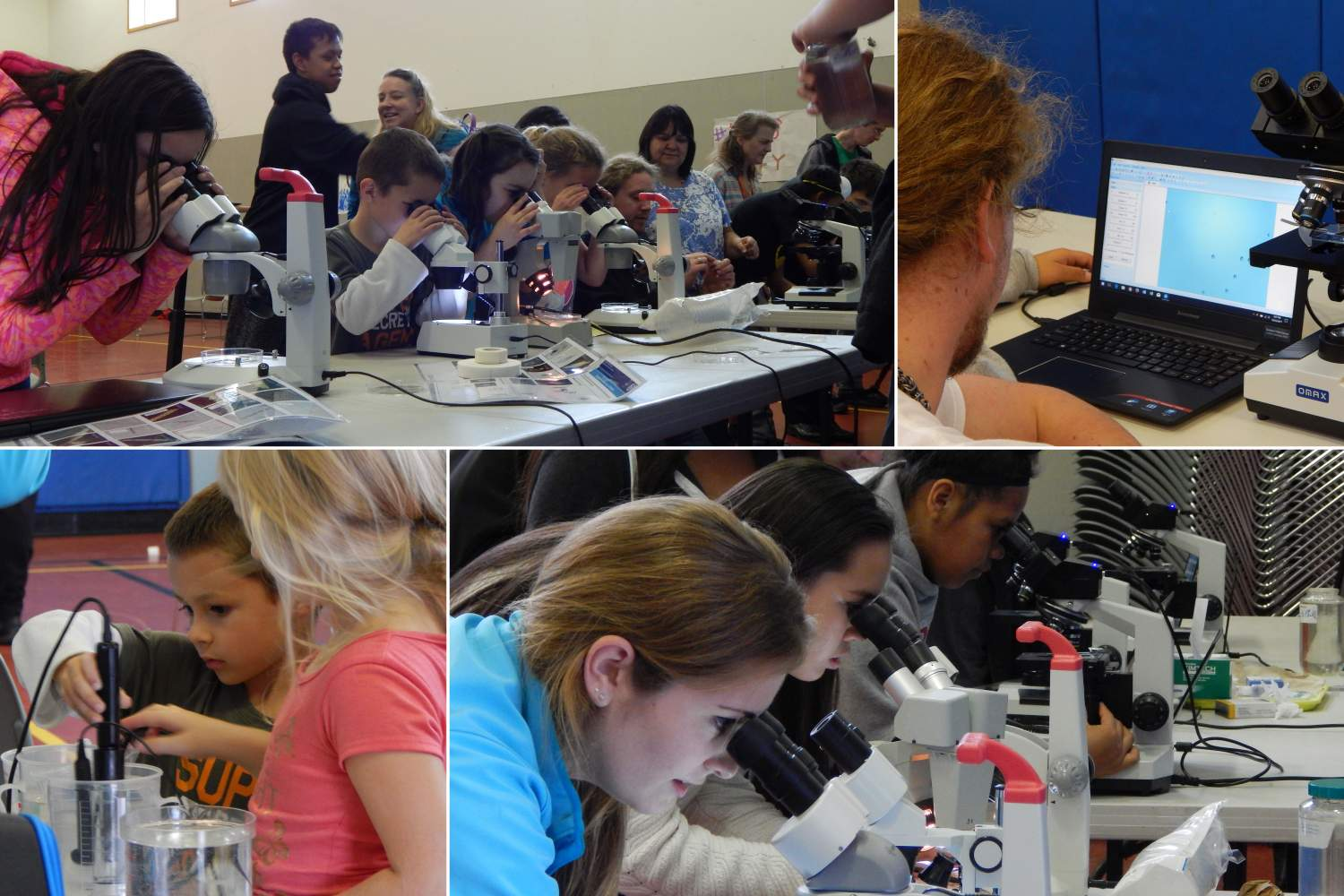 Get Dirty! Kids using microscopes