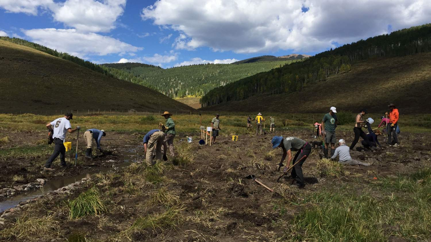 Roaring Fork outdoor volunteers