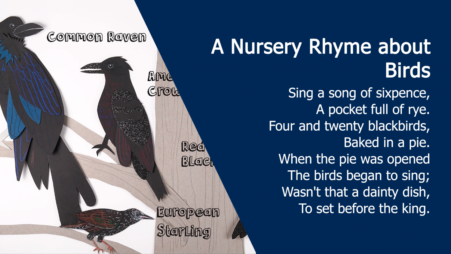 A Nursery Rhyme about Birds: Sing a song of sixpence, A pocket full of rye. Four and twenty blackbirds, Baked in a pie. When the pie was opened The birds began to sing; Wasn't that a dainty dish, To set before the king.