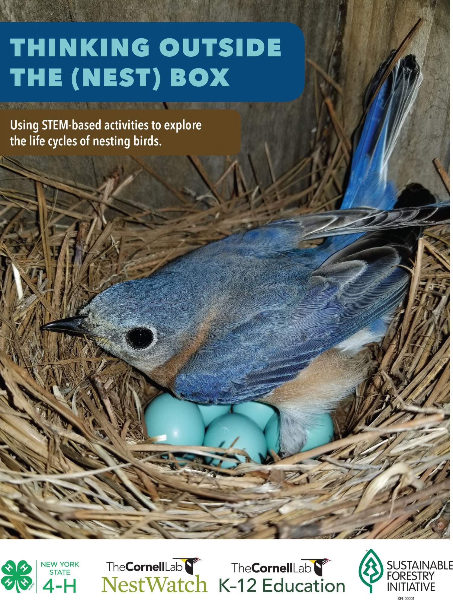 Thinking Outside the (Nest) Box
