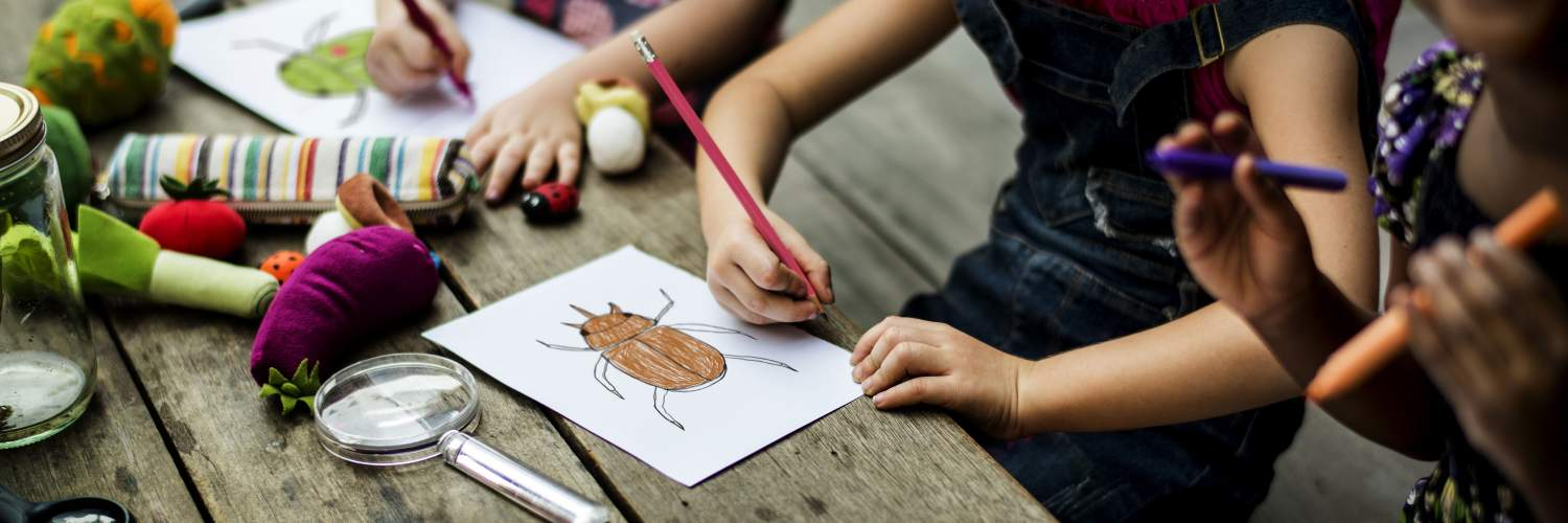 Drawing a ladybug during environmental education activity
