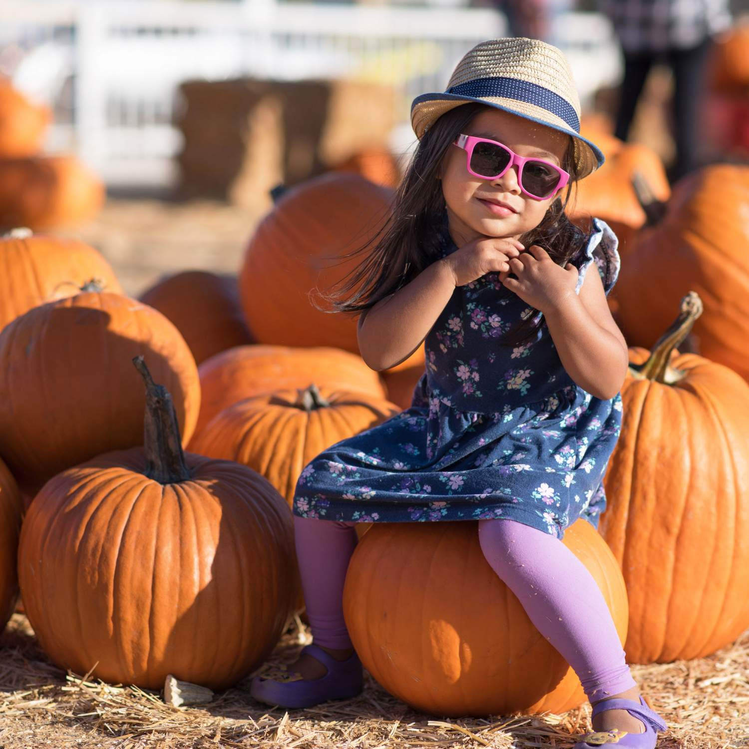 Girl at a pumpkin patch