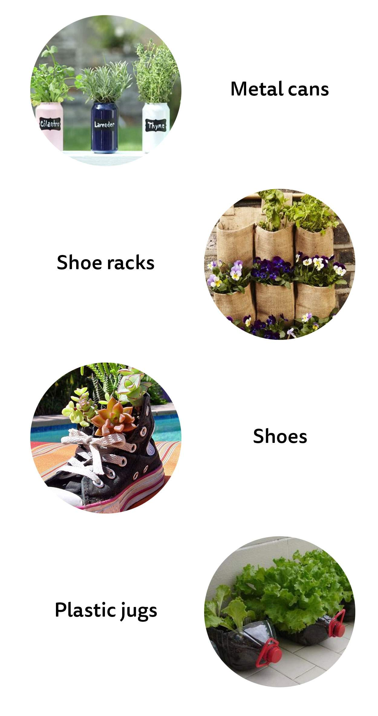 Different kinds of planters: metal cans; shoe racks; shoes; plastic jugs