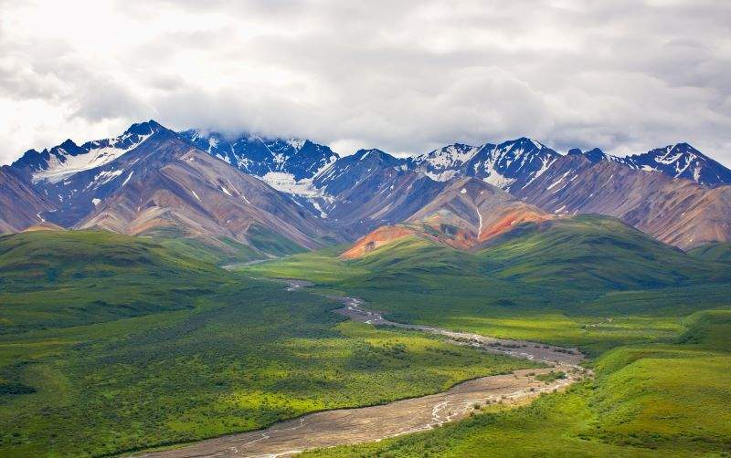 Denali National Park snow covered mountains with grass land below