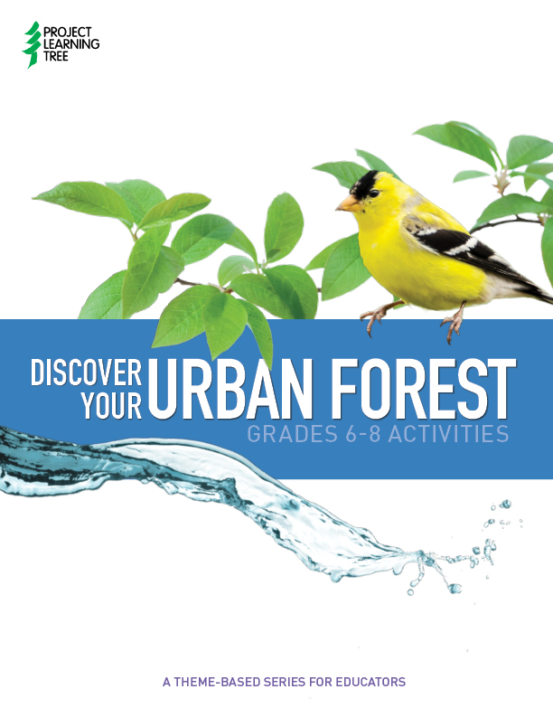 Discover Your Urban Forest