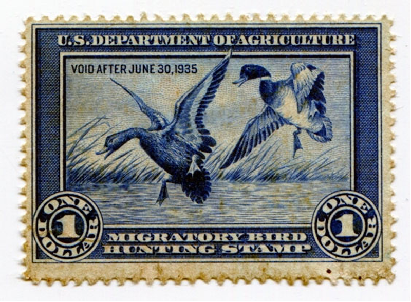 first duck stamp from 1935 with picture of mallard ducks