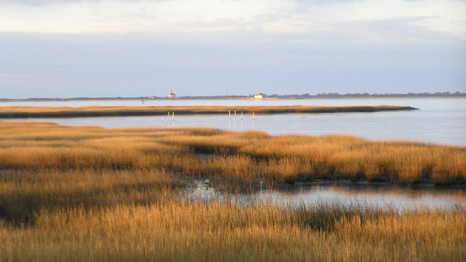 Salt marsh on Toms Cove, overlooking the Coast Guard Station and boathouse