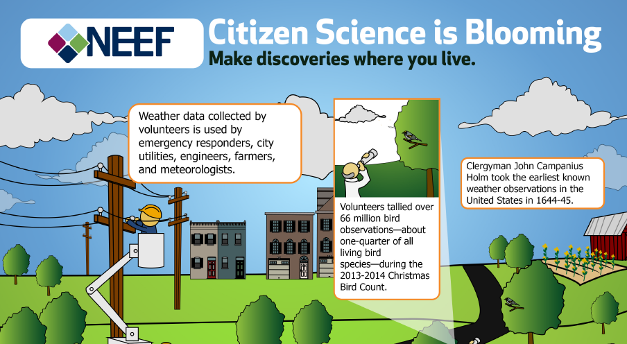 Citizen Science is Blooming