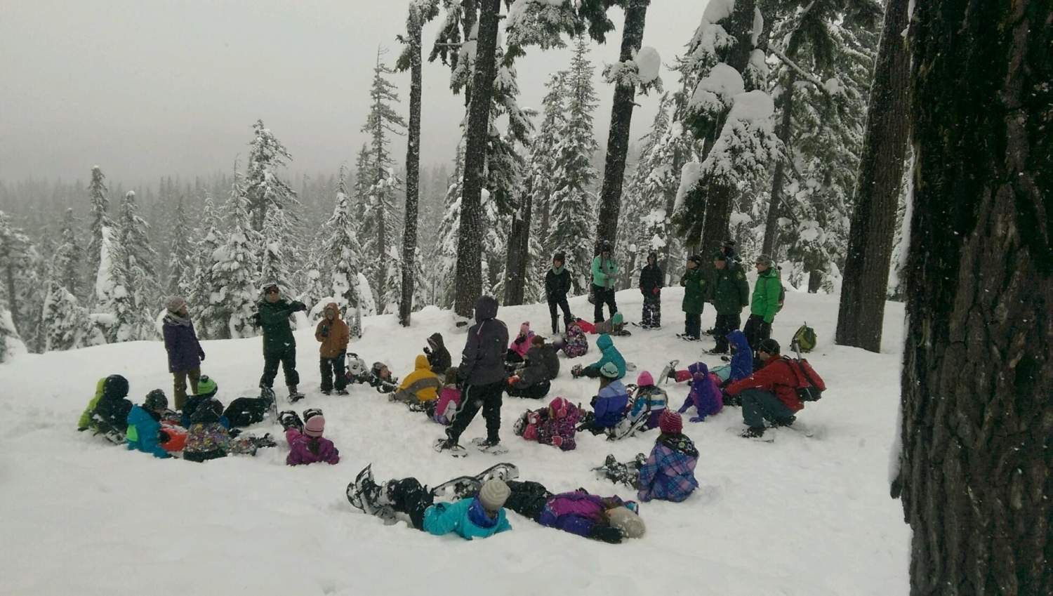 Students explore Oregon's national forests