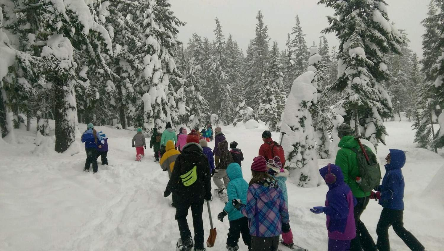Fourth grade students at Deschutes National Forest during Discover Your Forest's 2016 BioBlitz