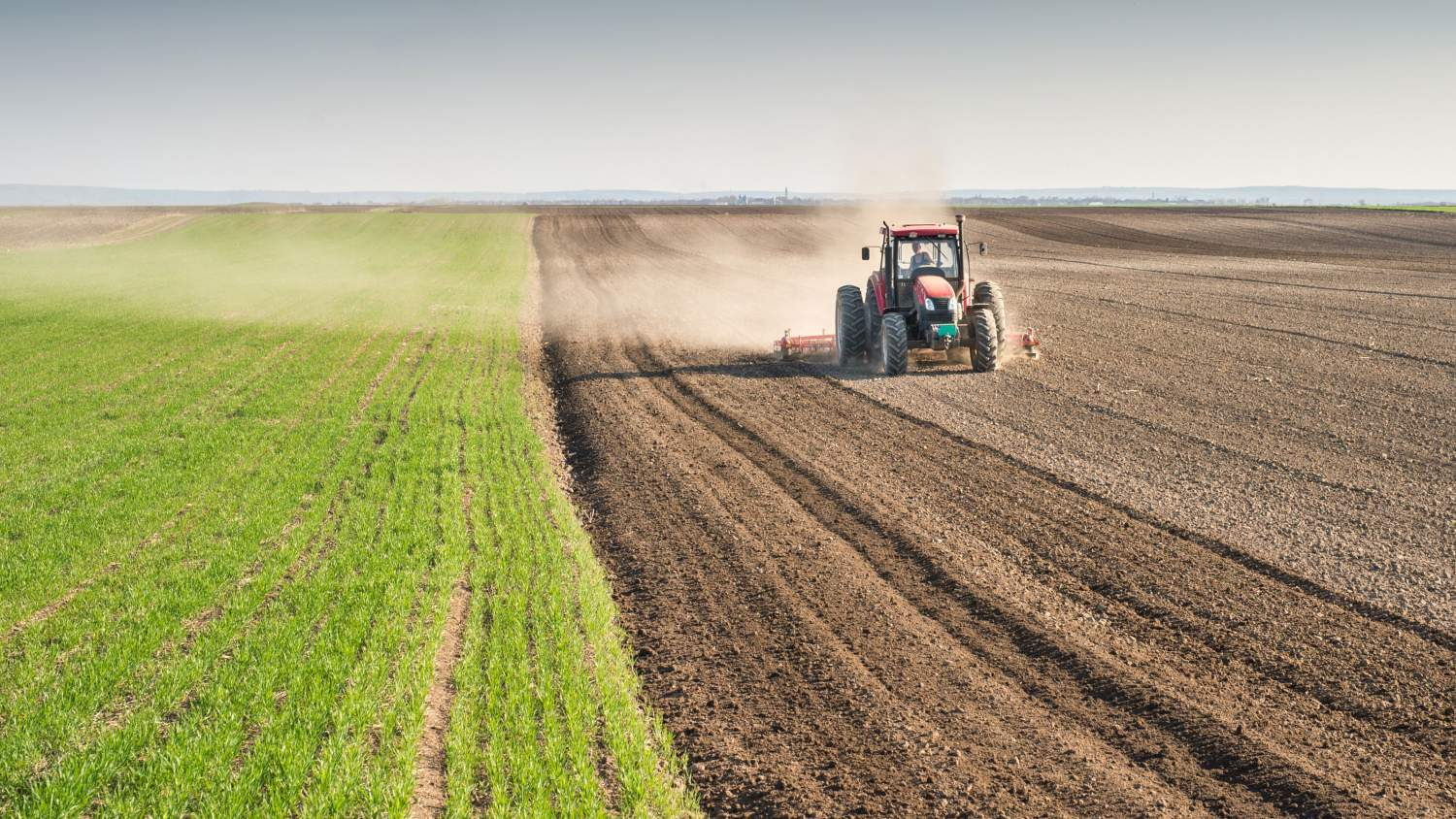 change in agricultural production in the Diversity in agricultural production is one key to productivity, as it enables risk management and preserves potentials for adaptation and change monoculture is an example of such a nondiverse production system.