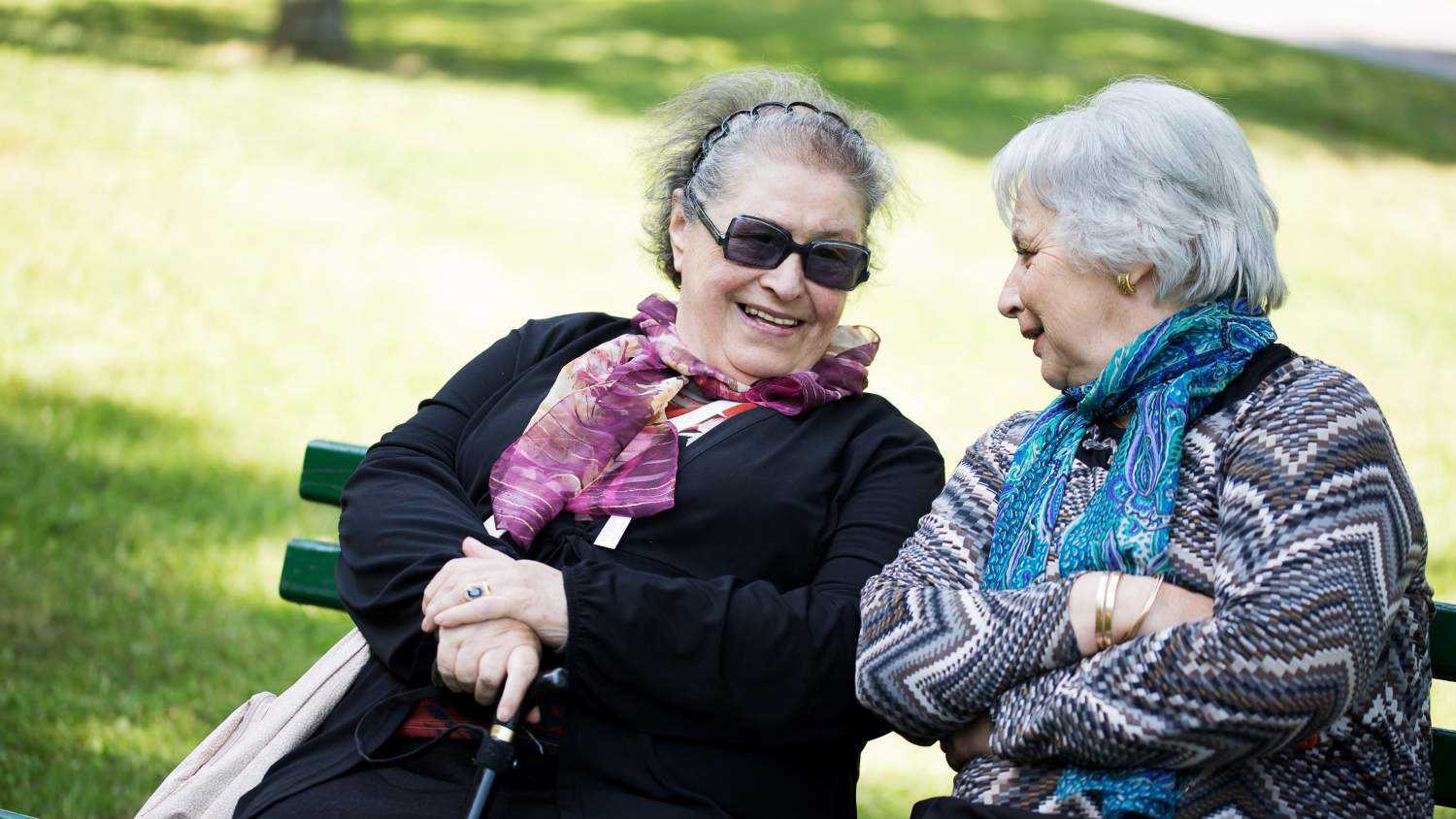 Two senior ladies having a conversation in a park
