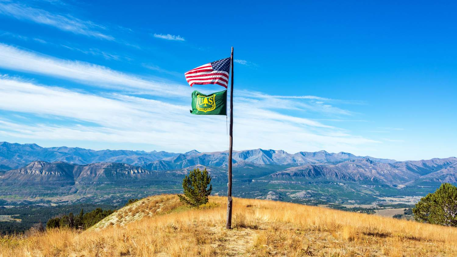 US and US Forest Service flag on hill top