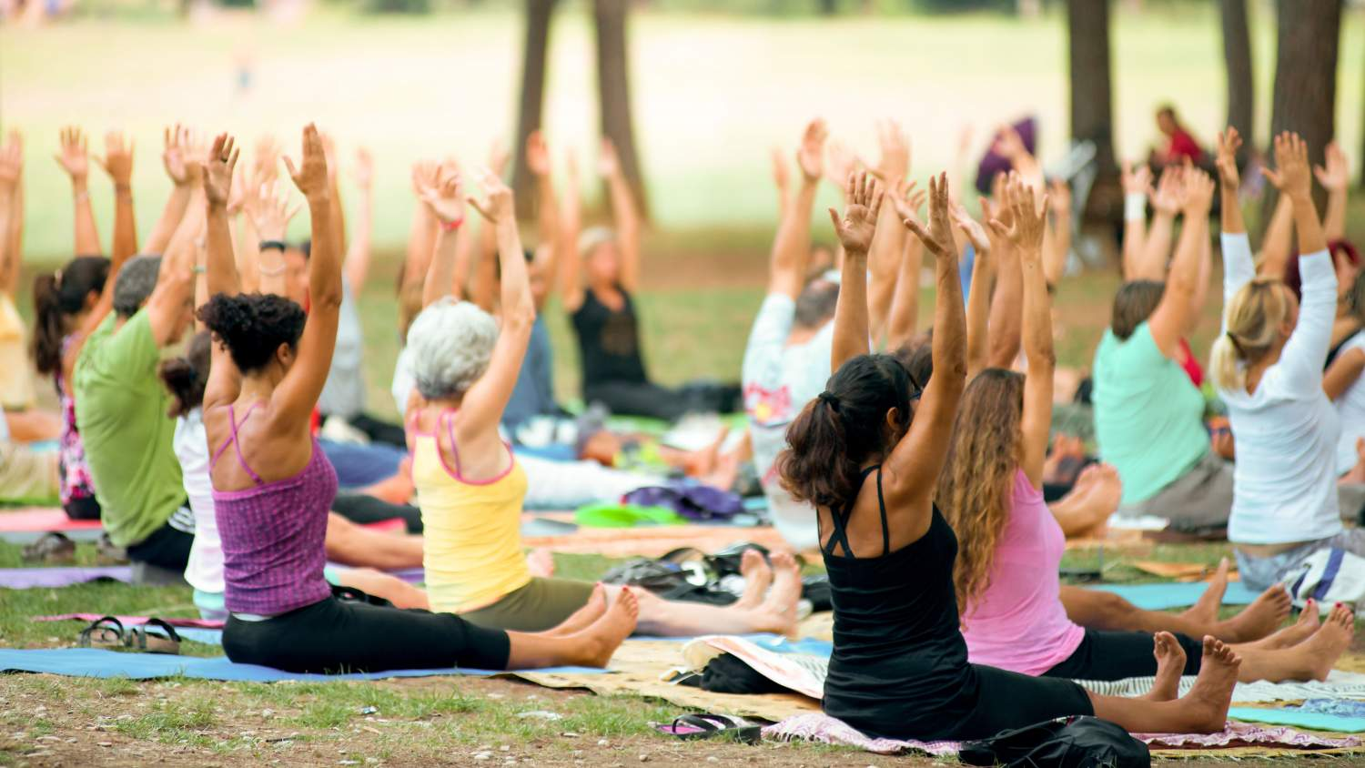 People practicing yoga in the park