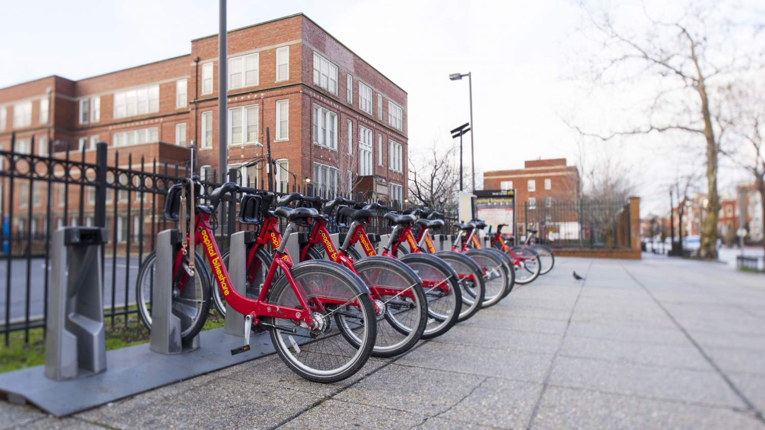 Capital Bikeshare in Washington DC