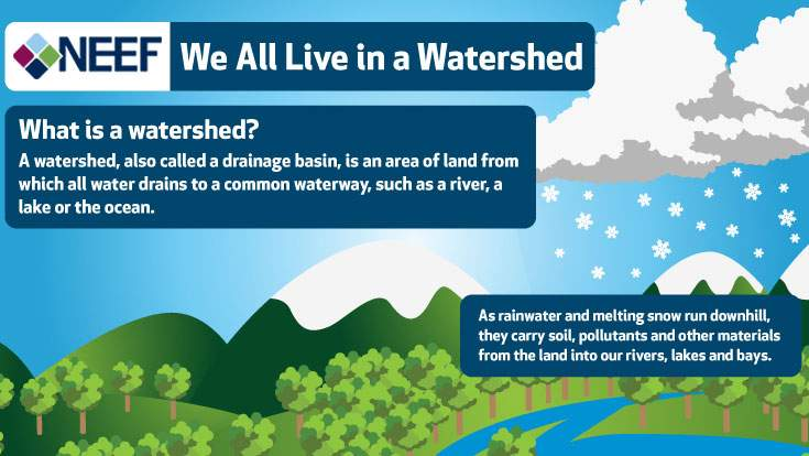 We All Live in a Watershed Infographic