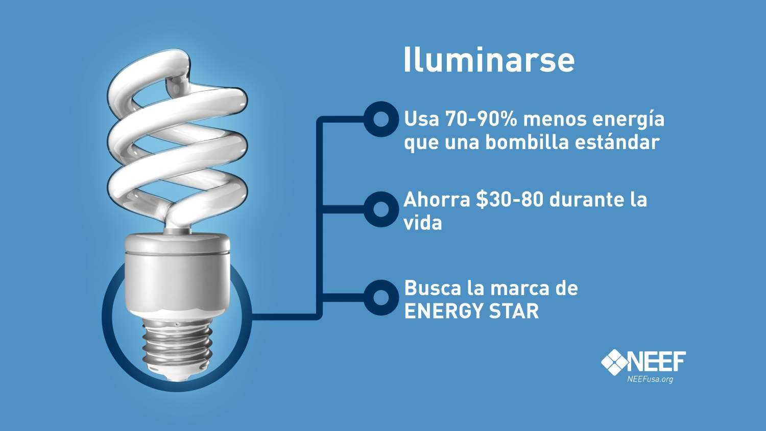 CFL Light Bulb Spanish