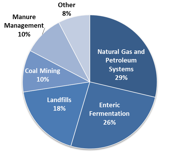 The Principal Greenhouse Gases And Their Sources Neef