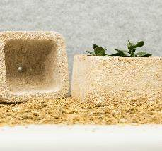 Packaging made from mycelium