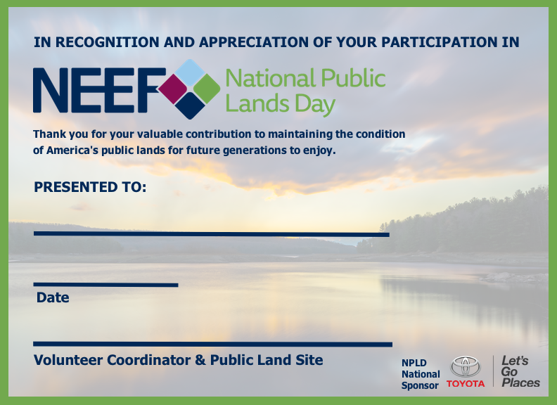VolunteerCertificate_Lake