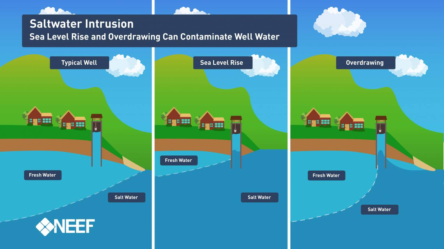 Groundwater and the Rising Seas | NEEF