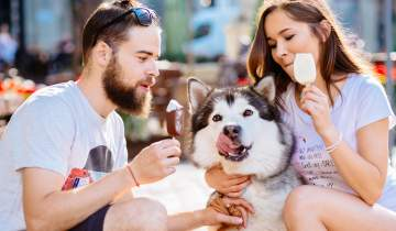 Couple eating ice cream with their dog