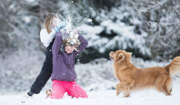 Kids playing in the snow with their dog