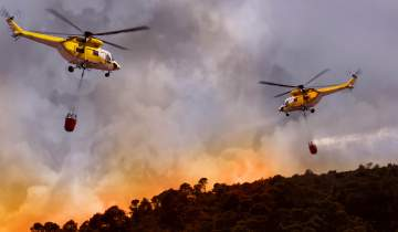 wildfires asthma triggers