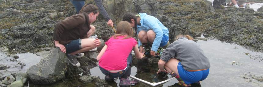 Students out in the field participating in a citizen science project