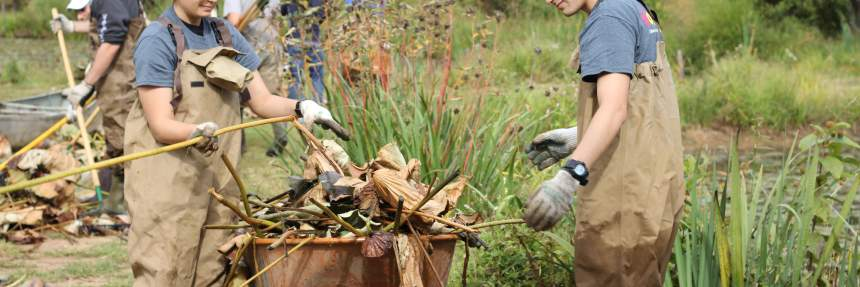 Volunteers at National Public Lands Day 2015 at Kenilworth Aquatic Gardens