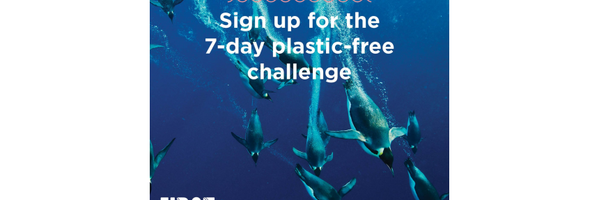 Sign up for the 7-day plastic-free challenge; First Step