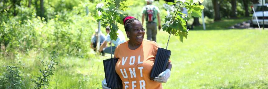 Volunteer planting trees at an event