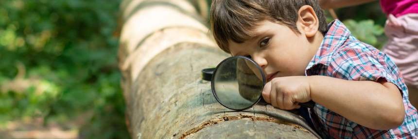 Kid observing log