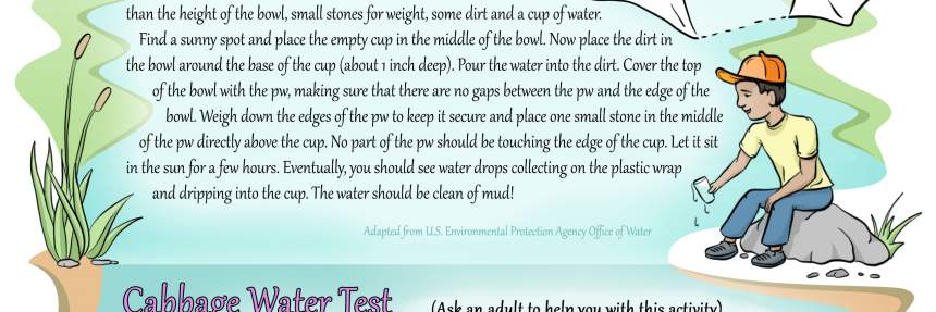 Water Quality Activity Guide