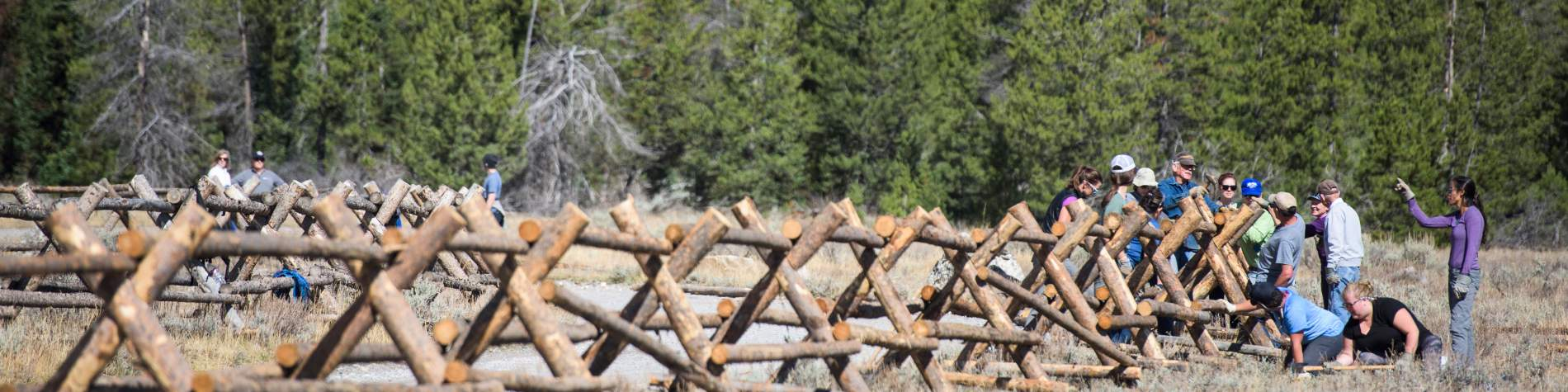 Volunteers building a fence at Grand Teton