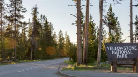 An entrance road to Yellowstone National Park with a sign