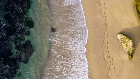 Aerial view of rocks and beach