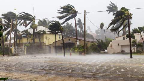 Hurricane in the streets of Ft. Lauderdale, Florida