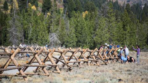 Building a fence at Grand Teton