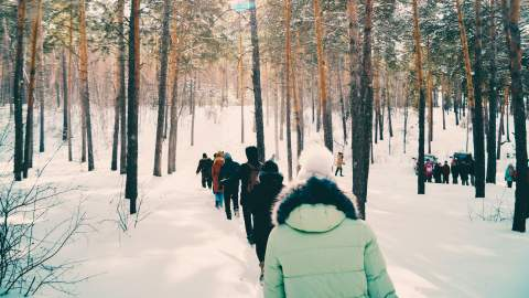 Researchers walking through the snow