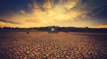 Dealing with Drought Udemy Course Screenshot